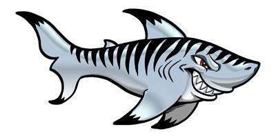 tiger sharks clipart 33