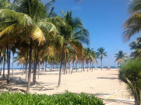 a review of the lago mar resort in ft lauderdale florida beach picture of lago mar beach resort club fort