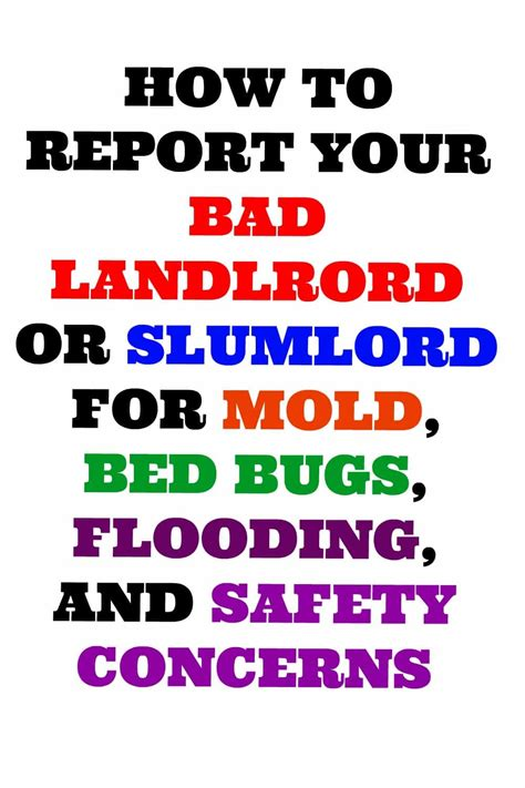 who is responsible for bed bugs landlord or tenant how to report a bad landlord or slumlord for housing code