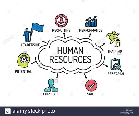 Human Resources human resources chart with keywords and icons sketch