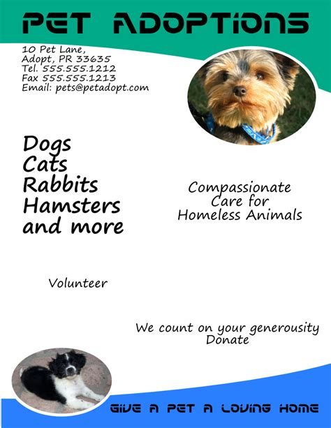 Pet Adoptions Flyer Template Free View Larger Image Flyertutor Com Adoption Flyer Template