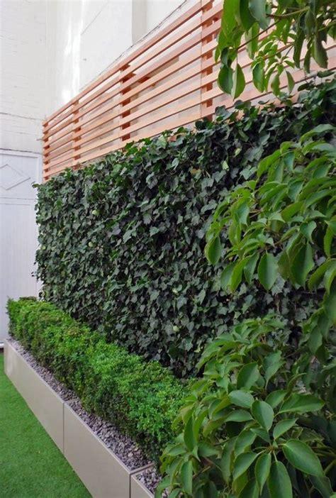 imagenes de jardines verticales pequeños 50 im 225 genes de los jardines verticales m 225 s impactantes fotos