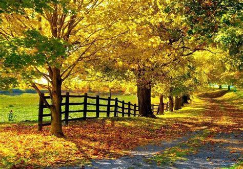 imagenes de paisajes naturales y culturales cropped paisajes naturales jpg msg psicolog 237 a