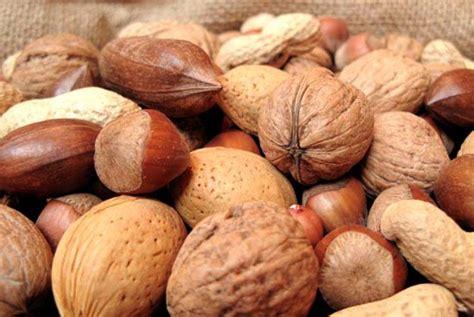 alimenti ricchi di rame e zinco 187 semi oleosi quali sono