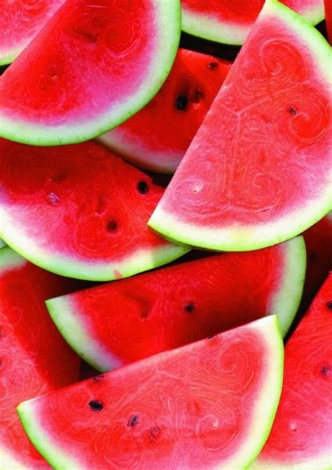 Water Melon watermelon all about fruit