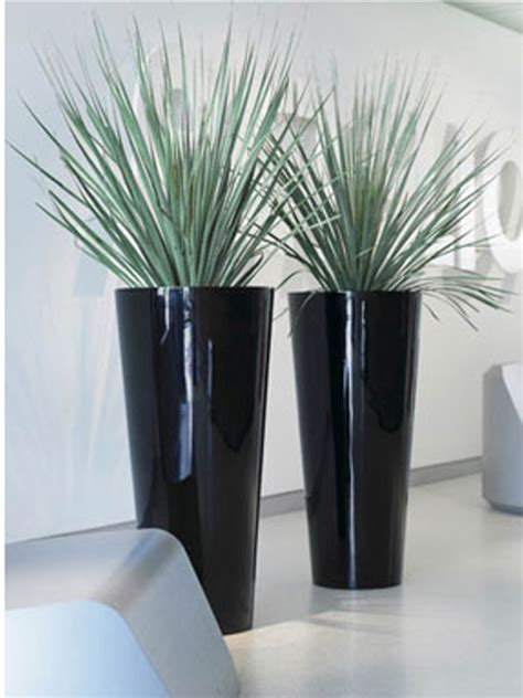 office pots large indoor plant pots indoor office planters melbourne