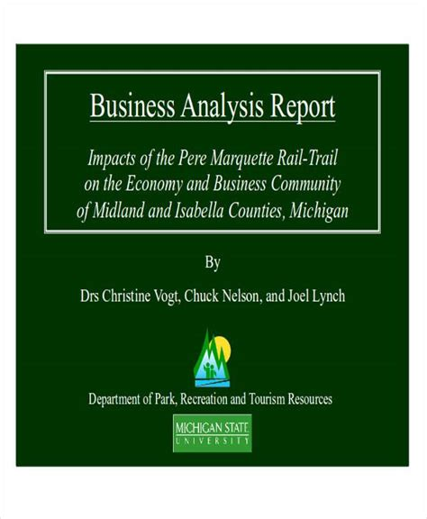 8 sle business analysis reports sle templates