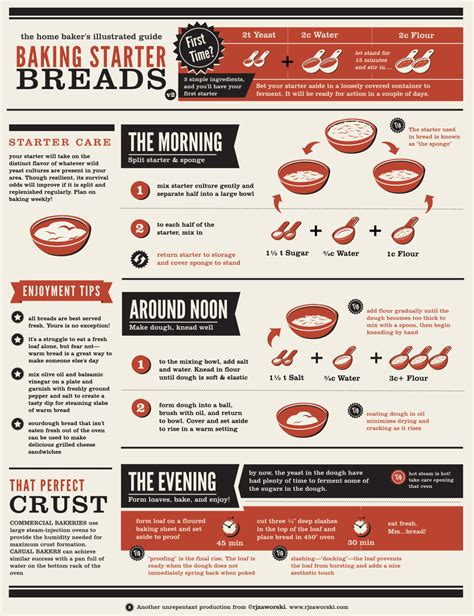 cooking infographic the infographic guide on how to make starter bread