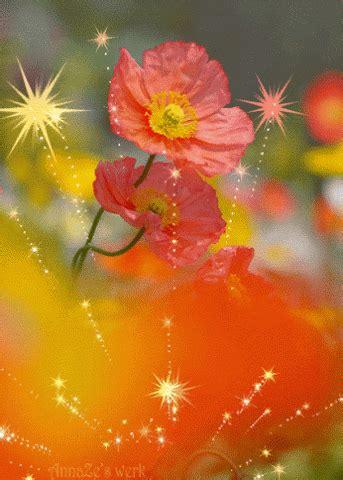 imagenes rosas gif gif flores im 225 genes de amor pinterest imagenes con