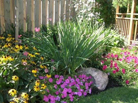 low maintenance backyard landscaping ideas best 25 low maintenance landscaping ideas on pinterest
