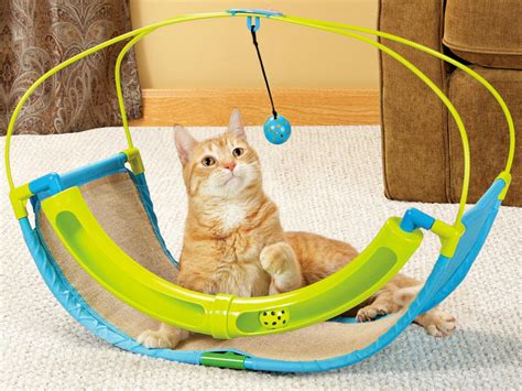 interactive cat toys for indoor cats 4k wallpapers