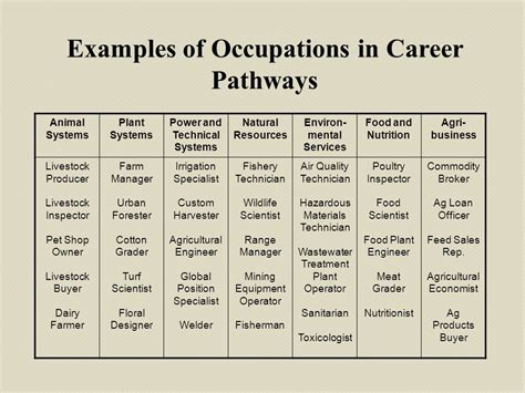 Sample Resume Objectives When Changing Careers by Career Development Relating To Employment Opportunities