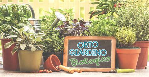 orto e giardino biologico peperoncini perenni in vaso o in piena terra orto