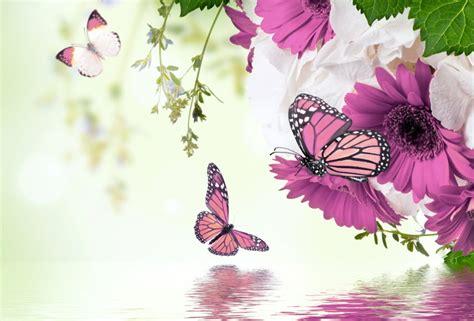 imagenes mariposas para uñas обои бабочки весна фиолет вода фотошоп красиво цветы