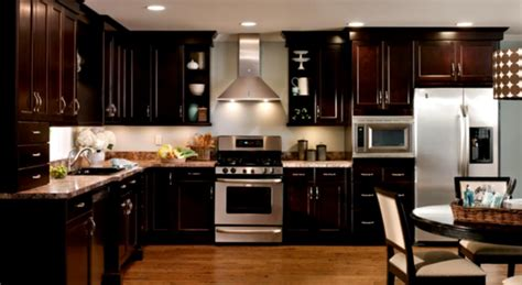 kitchen design pictures dark cabinets modern contemporary kitchen designs modern house