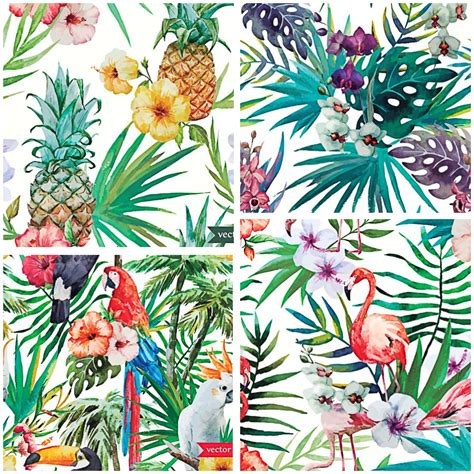 watercolor tropical pattern set of 4 colorful vectors with tropical flowers and birds