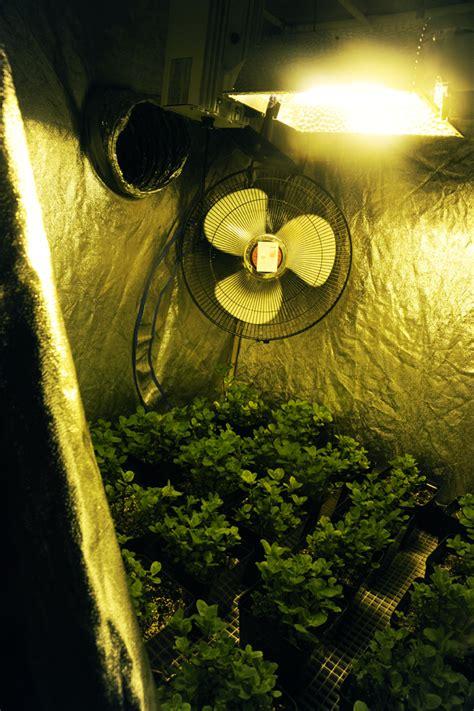 hps grow lights de hps grow lights grozinegrozine