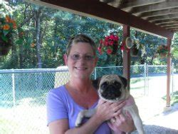 pug rescue nottingham green mountain pug rescue