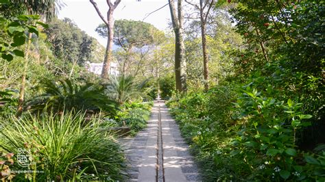 giardini a ischia tours dei giardini di ischia ischia guided tours