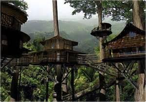 treehouse community tree house hotel costa rica ajilbab com myguiltypleasures