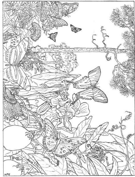Pilze Für Garten by 23 Best Erwachsene Ausmalbilder Images On