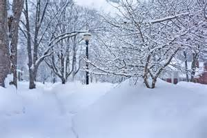 Snow Images Free Photo Deep Snow Winter Michigan Free Image On