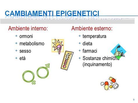 epigenetica e alimentazione nutrizione ed epigenetica prof ssa franca saccucci