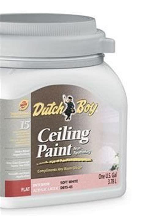 boy ceiling paint boy soft white ceiling paint 1 gallon