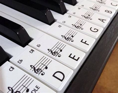 best keyboard to learn piano the 25 best piano labeled ideas on