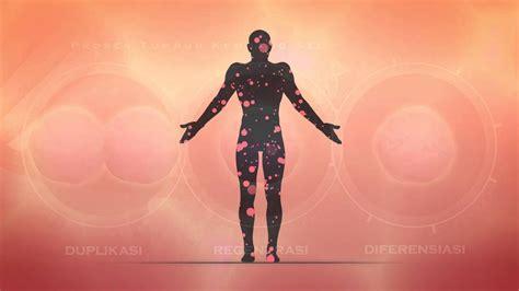 kk sgf suplemen untuk kesehatan tubuh
