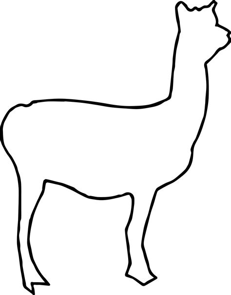Outline Llama Coloring Page Wecoloringpage Free Outline Pictures For Coloring