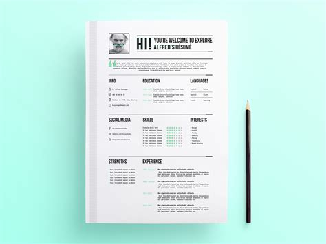 Professional Looking Resume Template by Free Professional Looking Resume Template With Stylish Design