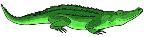 Collection of free iguania cliparts on clip art library