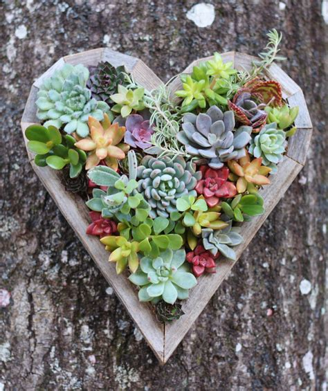 15 Natural And Handmade Living Succulent Decorations Succulent Planter Ideas