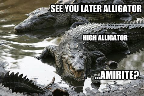 Alligator Meme - high alligator memes quickmeme