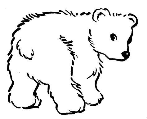 coloring pages black bear black bear coloring pages 9844 bestofcoloring com