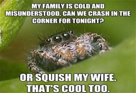Spider In House Meme - house spider meme pictures to pin on pinterest pinsdaddy