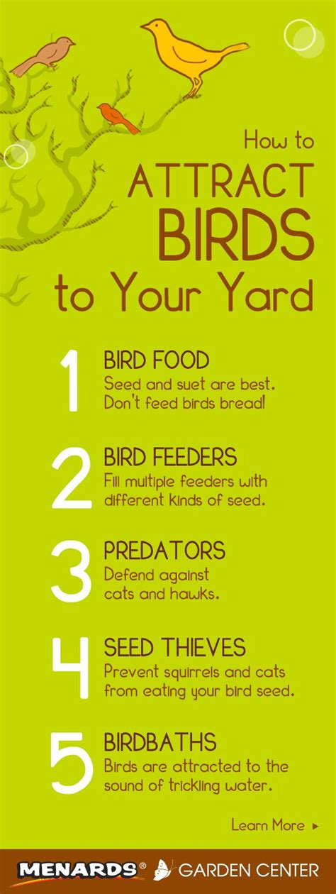 how to attract wildlife to your backyard attract birds to your yard with these 5 simple tips read