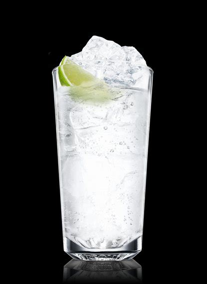 vodka tonic vodka tonic vodka