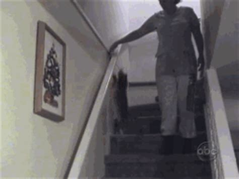sliding down banister love sex hamburger eat hungry memes best collection of