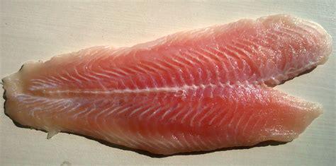 fish fillet wikipedia
