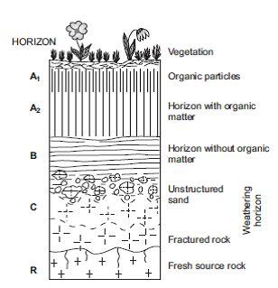 bio erosi adalah sedimentologi pengantar sedimen sedimentasi dan