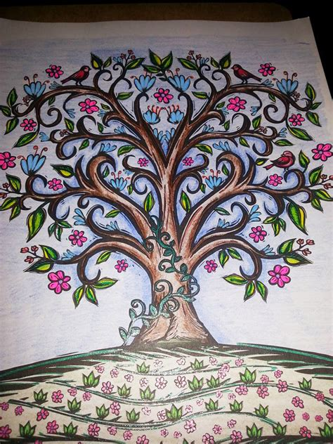 coloring books for adults nature sacred nature and sacred symbols coloring page