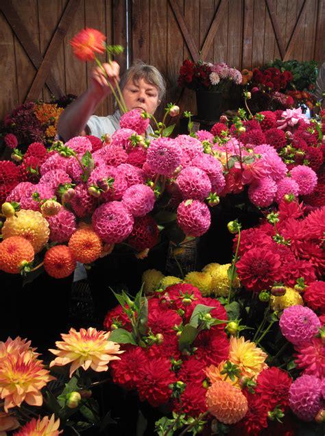 Garden State Flower Market Debra Prinzing 187 Flowers 52 Weeks