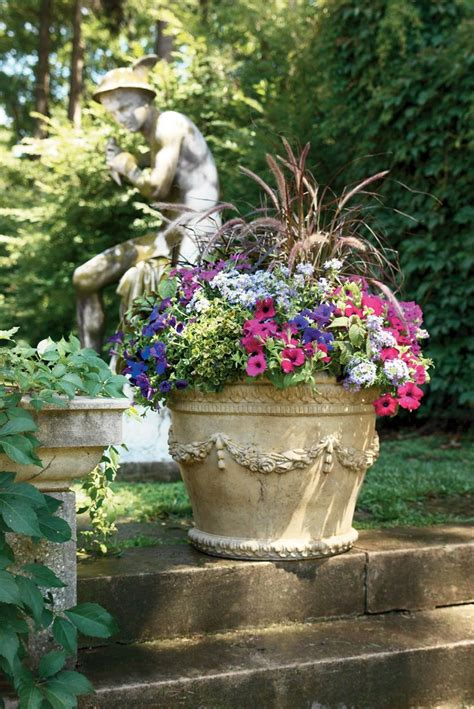 1000 images about container garden recipes on