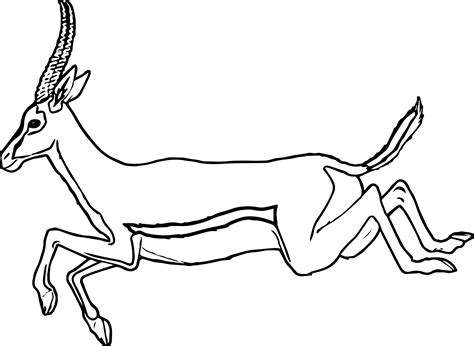 Coloring Page Of A by Leaping Antelope Coloring Page Wecoloringpage
