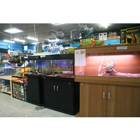 auburn aquarium pet centre on domayne centre 115