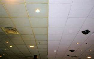 painting acoustic ceiling tiles in chicago aardvark