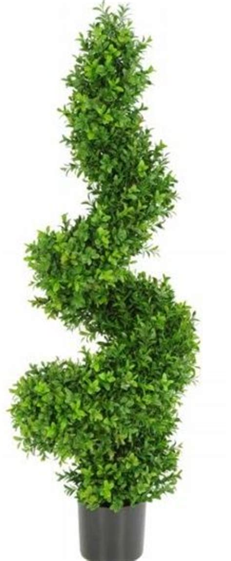 buxus topiary trees artificial buxus topiary spiral tree just artificial
