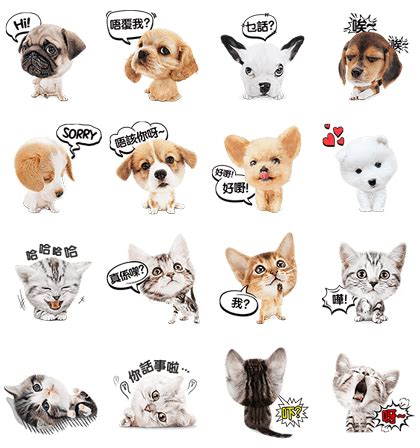 puppies and kittens and puppies cat and stickers line stickers